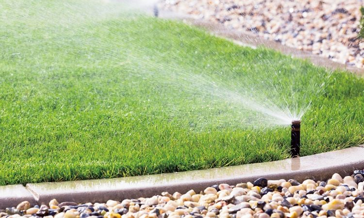 35-How To Reduce Landscape Watering Costs